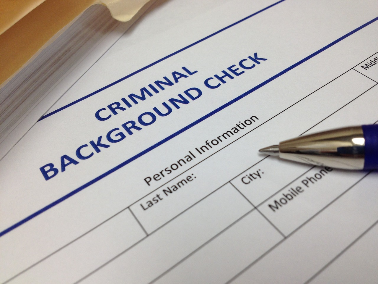 The Criminal Record and Credit Relationship